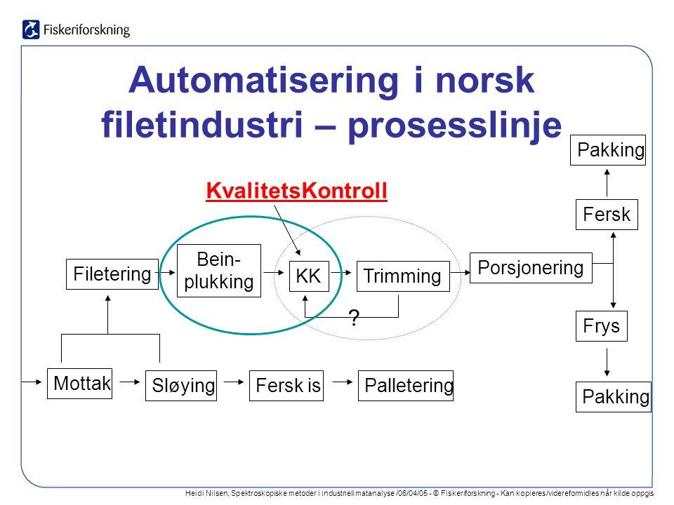 Heidi Nilsen, Spektroskopiske metoder i industriell matanalyse /06/04/05 - © Fiskeriforskning - Kan kopieres/videreformidles når kilde oppgis Beindeteksjon - røntgen Røntgenbilde av filet – med bruk av algoritme for påvisning av bein
