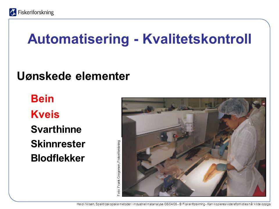 Heidi Nilsen, Spektroskopiske metoder i industriell matanalyse /06/04/05 - © Fiskeriforskning - Kan kopieres/videreformidles når kilde oppgis Foto: Frank Gregersen, Fiskeriforskning Deteksjon av kveis i hvitfisk - Utfordringer variasjon i farge: hvit, gul, rosa, rød, brun variasjon i størrelse og orientering lokalisering: tykkfisk, buk, i mørk/lys muskel struktur i fiskemuskel blodflekker kveis bak skinnrester og rester av svarthinne