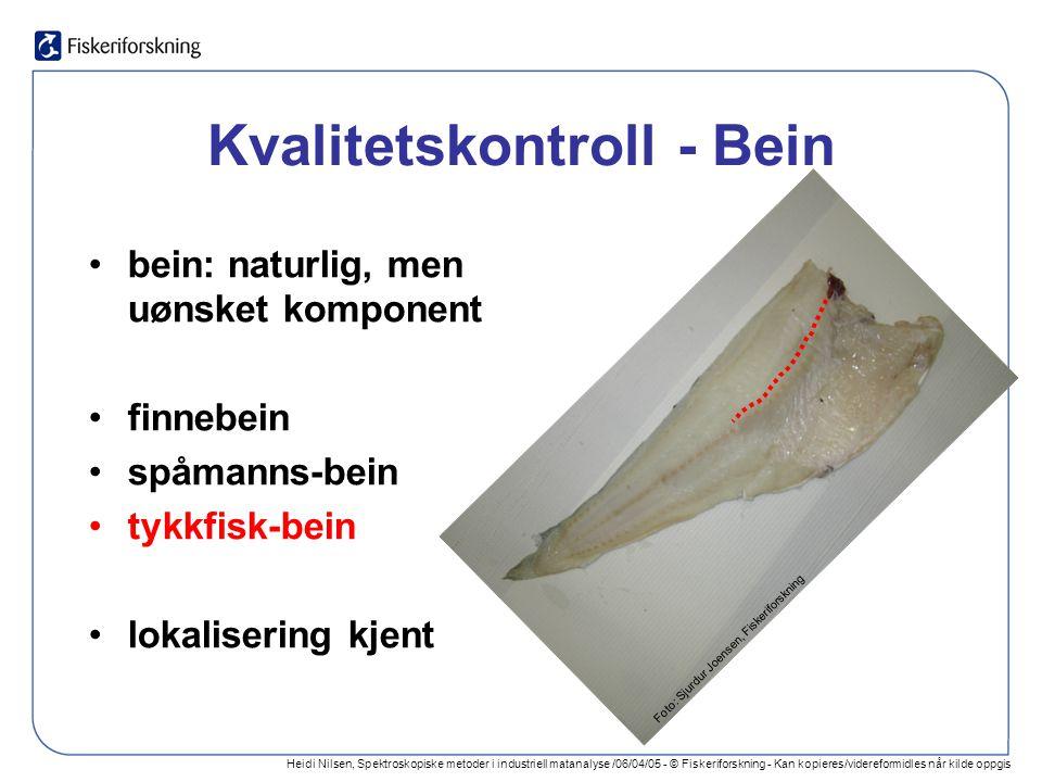 Heidi Nilsen, Spektroskopiske metoder i industriell matanalyse /06/04/05 - © Fiskeriforskning - Kan kopieres/videreformidles når kilde oppgis Kvalitetskontroll - Bein bein: naturlig, men uønsket komponent finnebein spåmanns-bein tykkfisk-bein lokalisering kjent Foto: Sjurdur Joensen, Fiskeriforskning