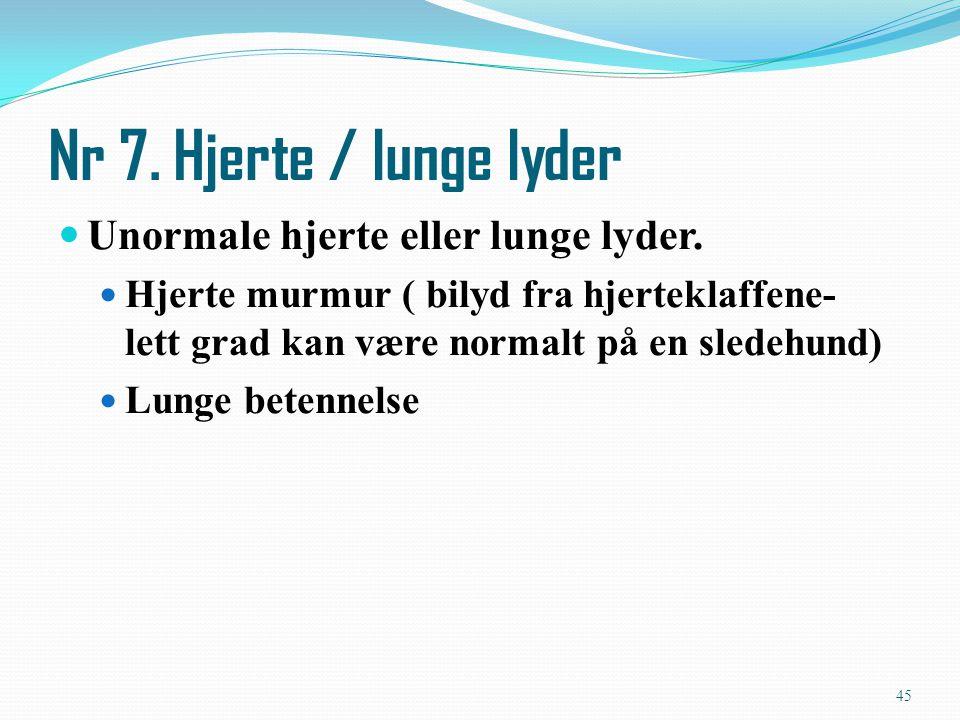 Unormale hjerte eller lunge lyder. Hjerte murmur ( bilyd fra hjerteklaffene- lett grad kan være normalt på en sledehund) Lunge betennelse Nr 7. Hjerte