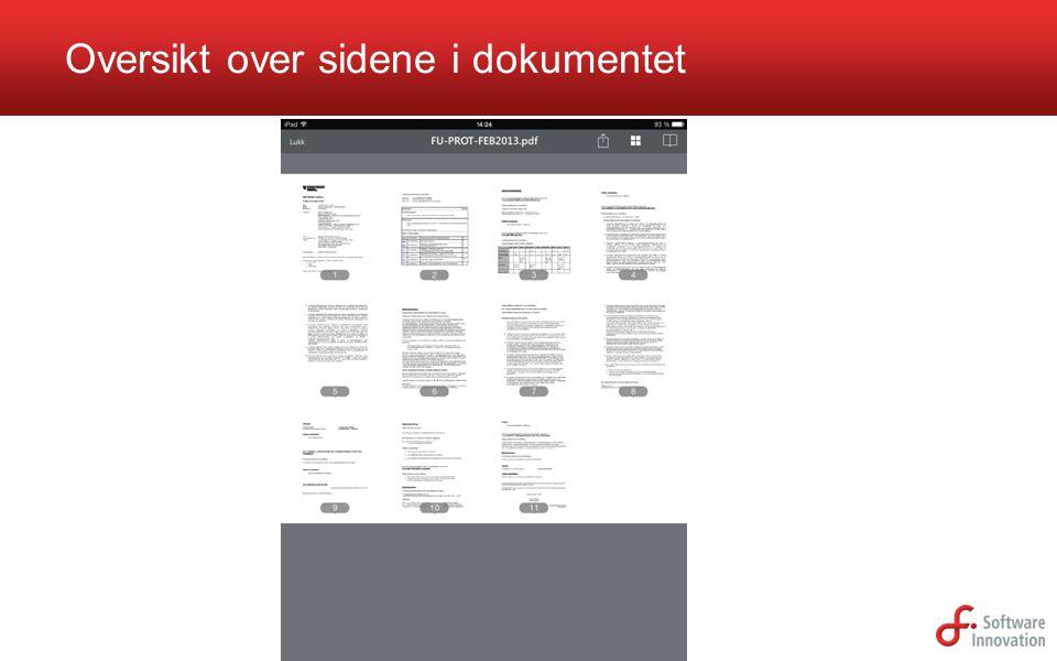 Oversikt over sidene i dokumentet
