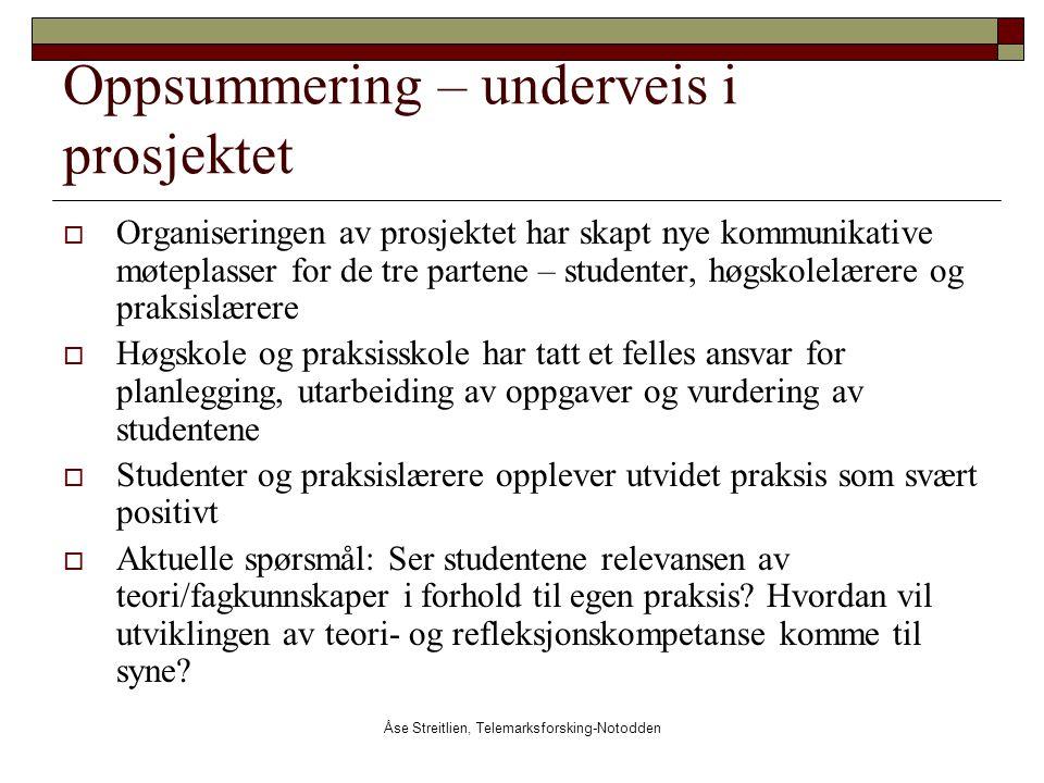 Åse Streitlien, Telemarksforsking-Notodden Oppsummering – underveis i prosjektet  Organiseringen av prosjektet har skapt nye kommunikative møteplasse