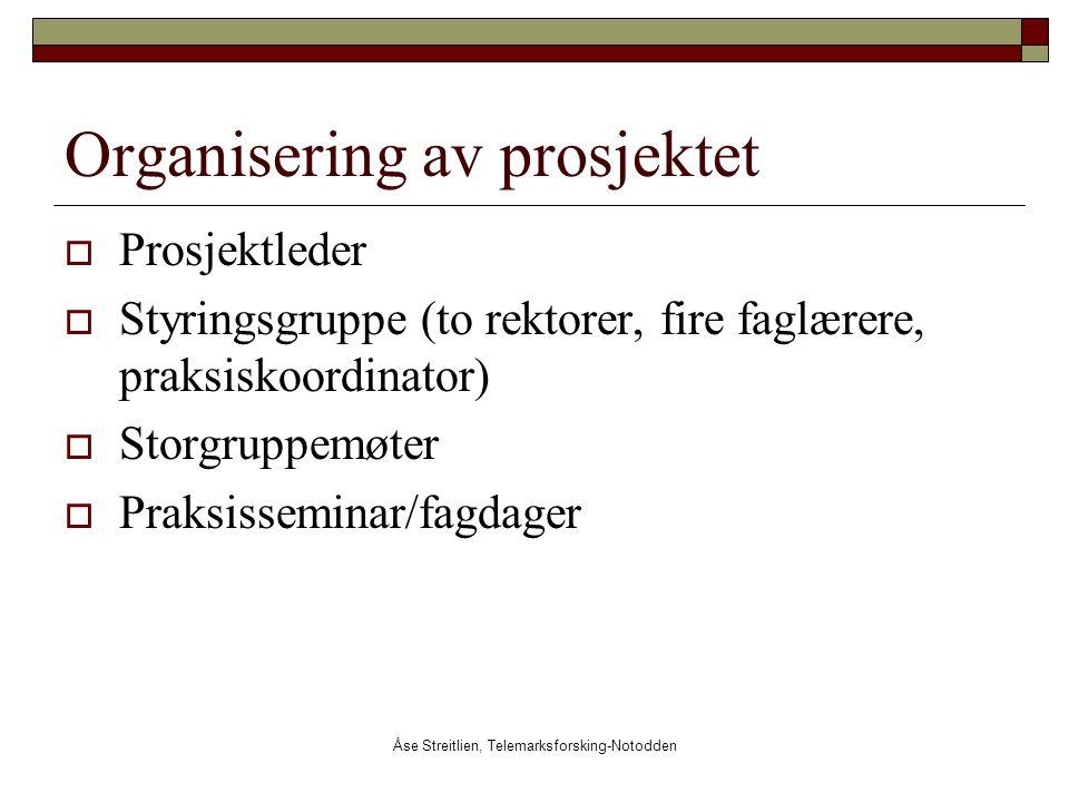Åse Streitlien, Telemarksforsking-Notodden Organisering av prosjektet  Prosjektleder  Styringsgruppe (to rektorer, fire faglærere, praksiskoordinato