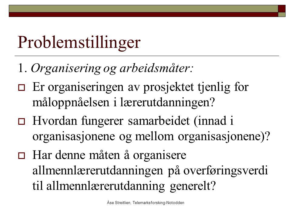 Åse Streitlien, Telemarksforsking-Notodden Problemstillinger 1. Organisering og arbeidsmåter:  Er organiseringen av prosjektet tjenlig for måloppnåel