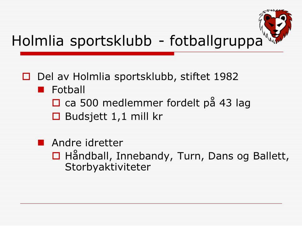 Holmlia sportsklubb - fotballgruppa  Del av Holmlia sportsklubb, stiftet 1982 Fotball  ca 500 medlemmer fordelt på 43 lag  Budsjett 1,1 mill kr Andre idretter  Håndball, Innebandy, Turn, Dans og Ballett, Storbyaktiviteter