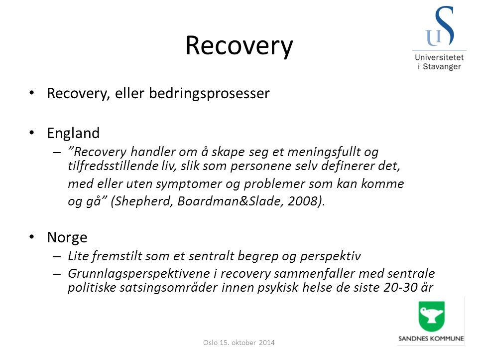 """Recovery Recovery, eller bedringsprosesser England – """"Recovery handler om å skape seg et meningsfullt og tilfredsstillende liv, slik som personene sel"""