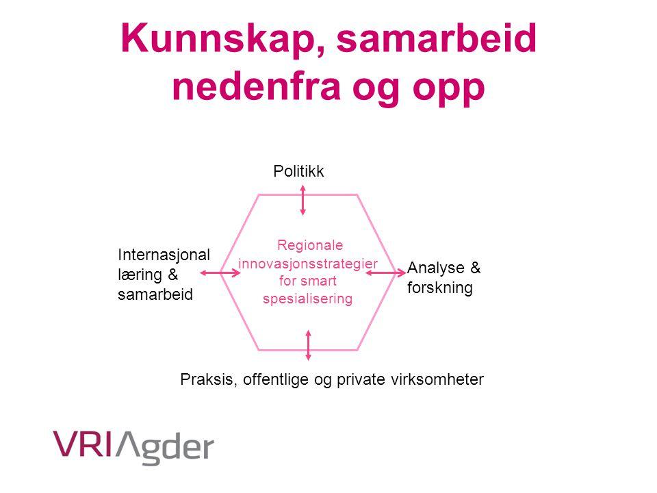 Kunnskap, samarbeid nedenfra og opp Politikk Analyse & forskning Praksis, offentlige og private virksomheter Internasjonal læring & samarbeid Regional