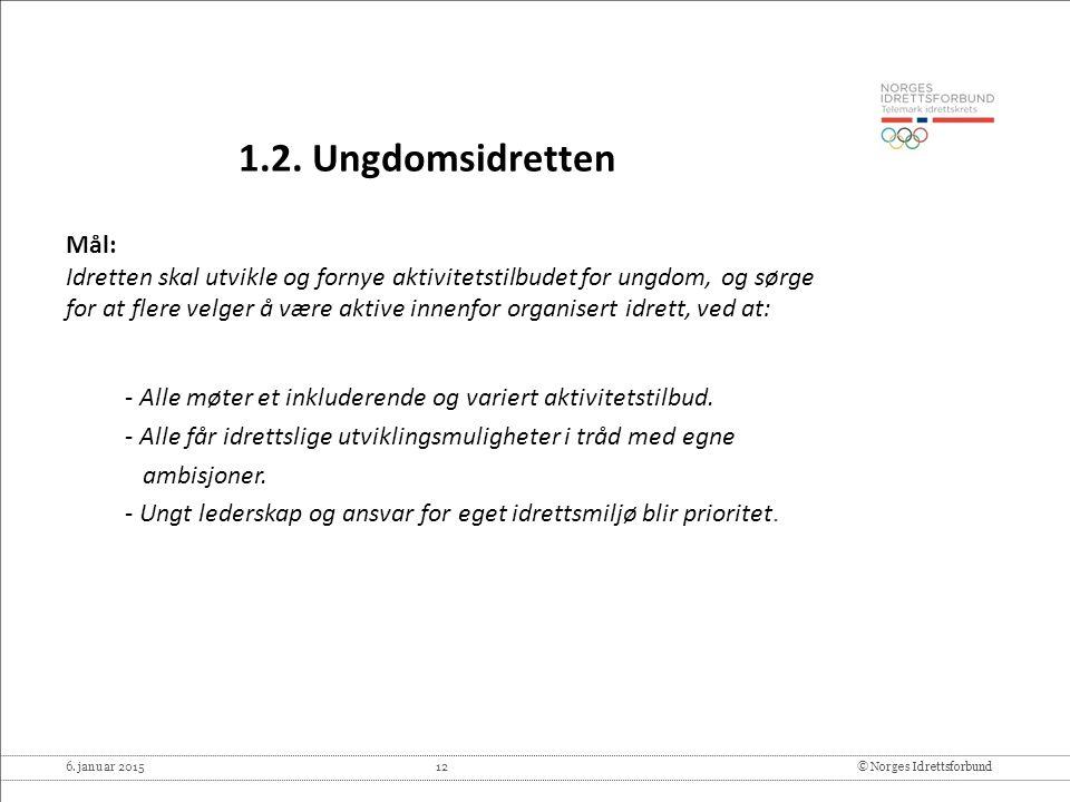 6. januar 2015 12© Norges Idrettsforbund 1.2. Ungdomsidretten Mål: Idretten skal utvikle og fornye aktivitetstilbudet for ungdom, og sørge for at fler