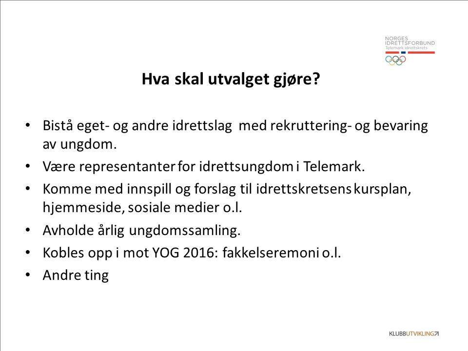 Hva skal utvalget gjøre? Bistå eget- og andre idrettslag med rekruttering- og bevaring av ungdom. Være representanter for idrettsungdom i Telemark. Ko