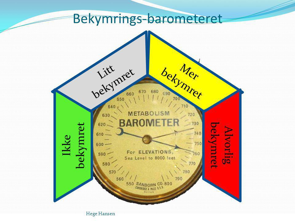 Bekymrings-barometeret Litt bekymret Ikke bekymret Mer bekymret Alvorlig bekymret Hege Hansen