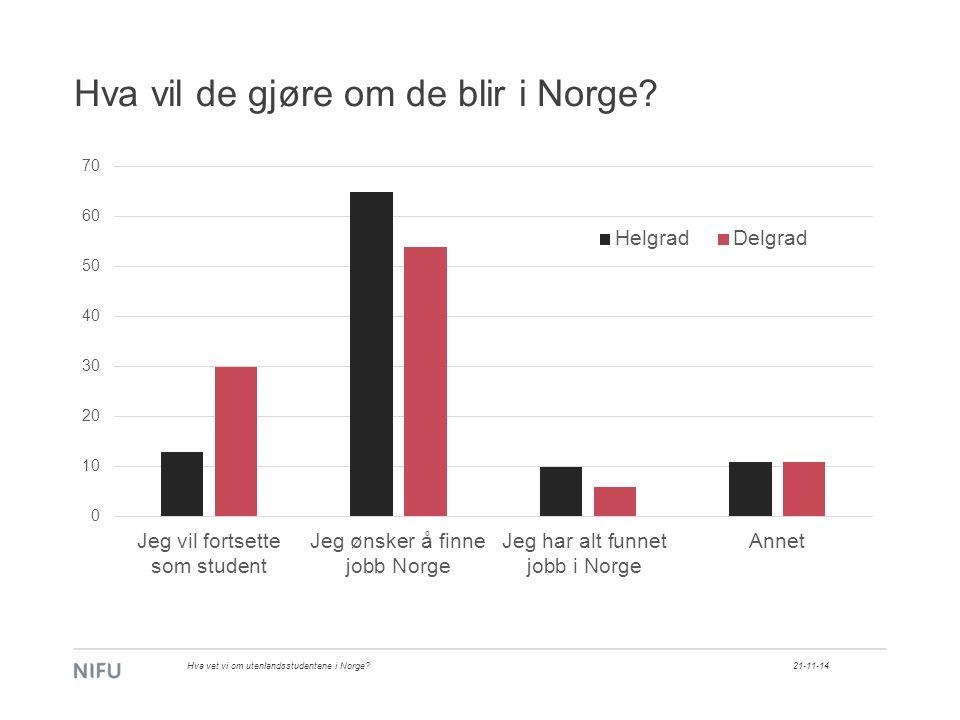 Hva vil de gjøre om de blir i Norge 21-11-14Hva vet vi om utenlandsstudentene i Norge