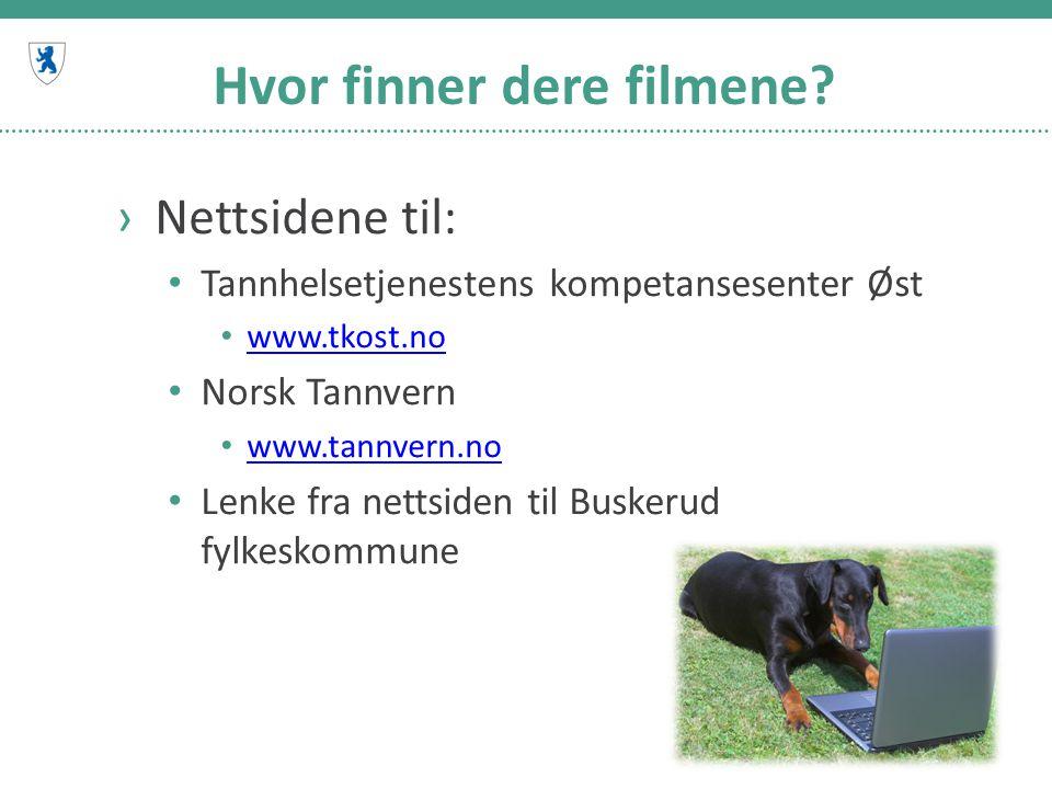 Hvor finner dere filmene? ›Nettsidene til: Tannhelsetjenestens kompetansesenter Øst www.tkost.no Norsk Tannvern www.tannvern.no Lenke fra nettsiden ti