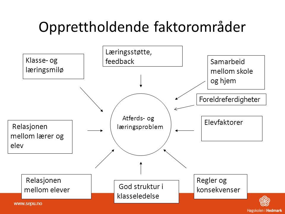 Opprettholdende faktorområder Atferds- og læringsproblem Læringsstøtte, feedback Relasjonen mellom lærer og elev Relasjonen mellom elever Samarbeid me