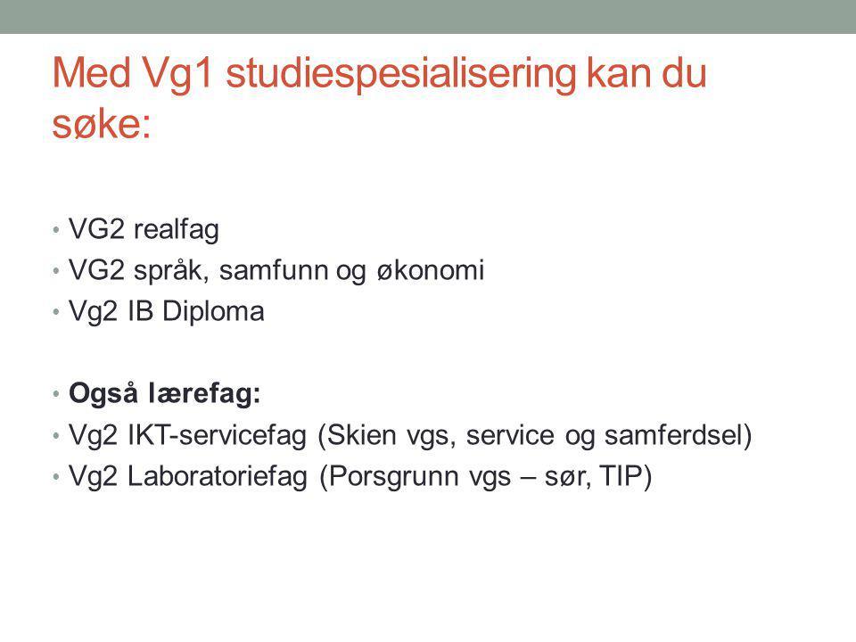 Med Vg1 studiespesialisering kan du søke: VG2 realfag VG2 språk, samfunn og økonomi Vg2 IB Diploma Også lærefag: Vg2 IKT-servicefag (Skien vgs, service og samferdsel) Vg2 Laboratoriefag (Porsgrunn vgs – sør, TIP)