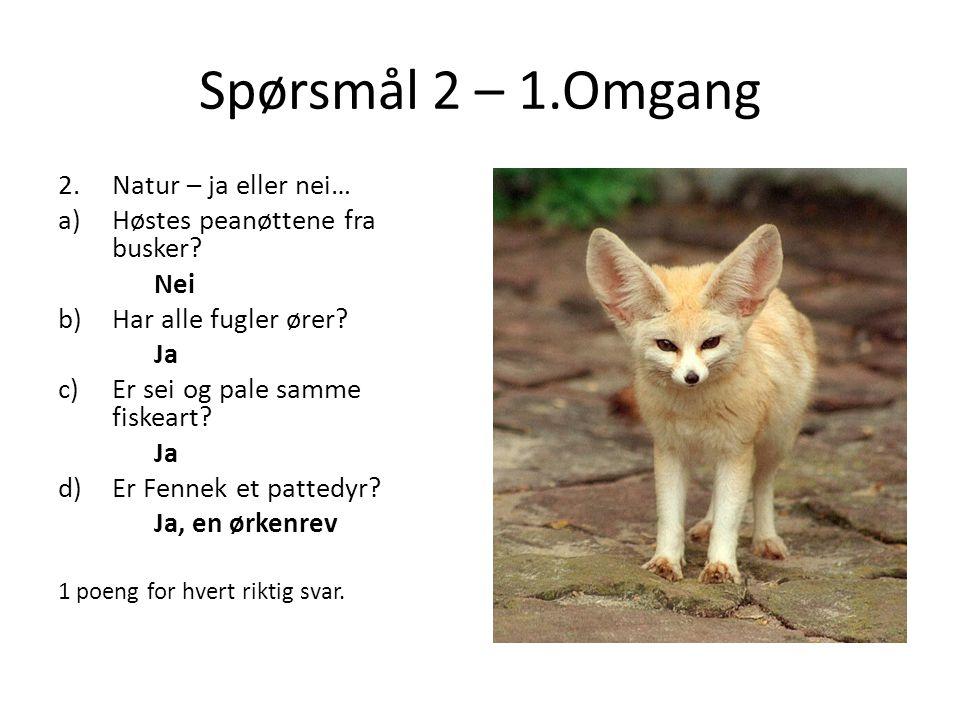 Spørsmål 2 – 1.Omgang 2.Natur – ja eller nei… a)Høstes peanøttene fra busker? Nei b)Har alle fugler ører? Ja c)Er sei og pale samme fiskeart? Ja d)Er