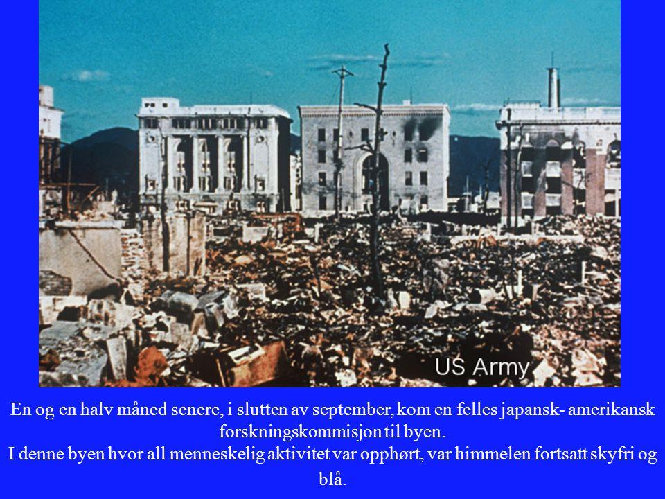 En og en halv måned senere, i slutten av september, kom en felles japansk- amerikansk forskningskommisjon til byen. I denne byen hvor all menneskelig