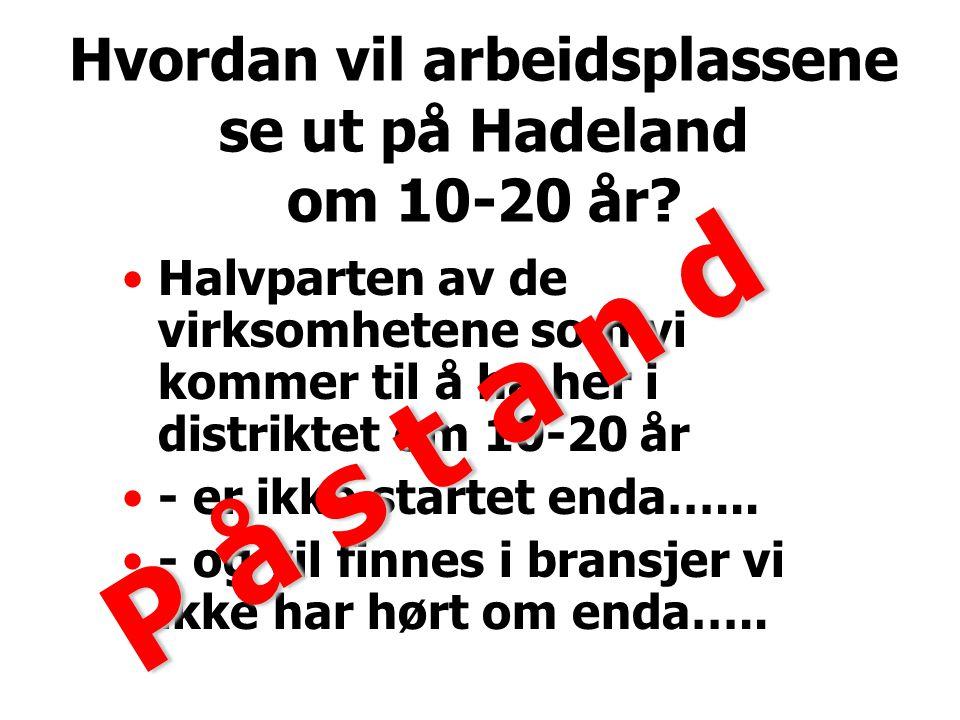 Hvordan vil arbeidsplassene se ut på Hadeland om 10-20 år.