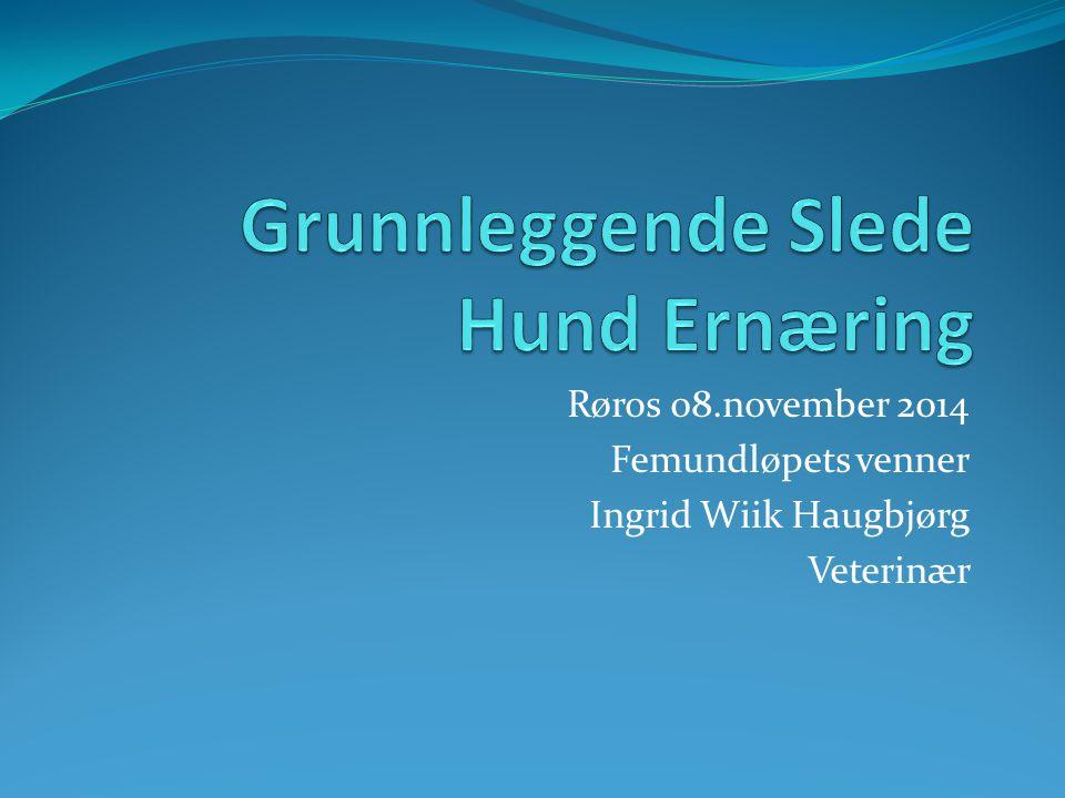 Røros 08.november 2014 Femundløpets venner Ingrid Wiik Haugbjørg Veterinær
