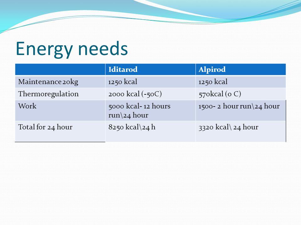 Energy needs IditarodAlpirod Maintenance 20kg1250 kcal Thermoregulation2000 kcal (-50C)570kcal (o C) Work5000 kcal- 12 hours run\24 hour 1500- 2 hour run\24 hour Total for 24 hour8250 kcal\24 h3320 kcal\ 24 hour