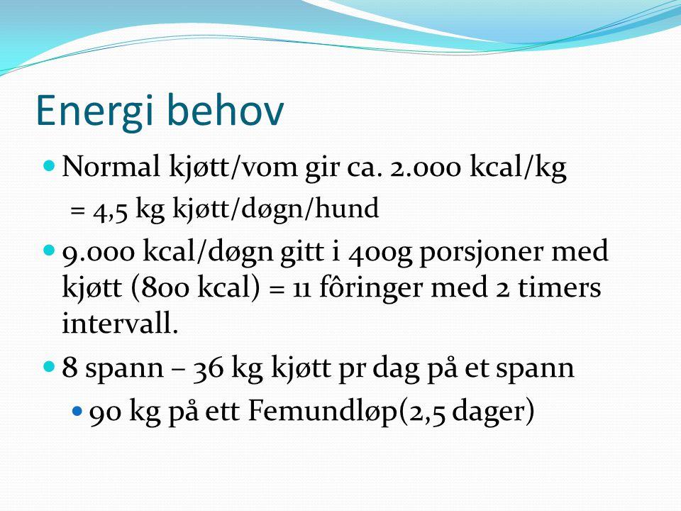 Energi behov Normal kjøtt/vom gir ca. 2.000 kcal/kg = 4,5 kg kjøtt/døgn/hund 9.000 kcal/døgn gitt i 400g porsjoner med kjøtt (800 kcal) = 11 fôringer