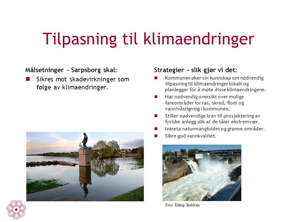 Tilpasning til klimaendringer Målsetninger – Sarpsborg skal: Sikres mot skadevirkninger som følge av klimaendringer. Strategier – slik gjør vi det: Ko