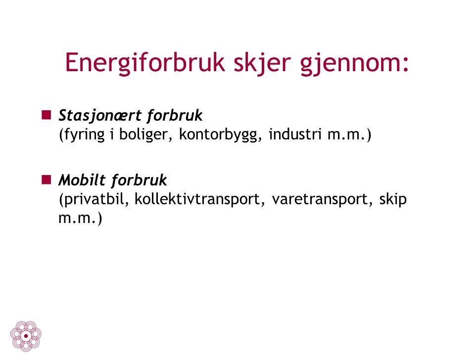 Energiforbruk skjer gjennom: Stasjonært forbruk (fyring i boliger, kontorbygg, industri m.m.) Mobilt forbruk (privatbil, kollektivtransport, varetrans