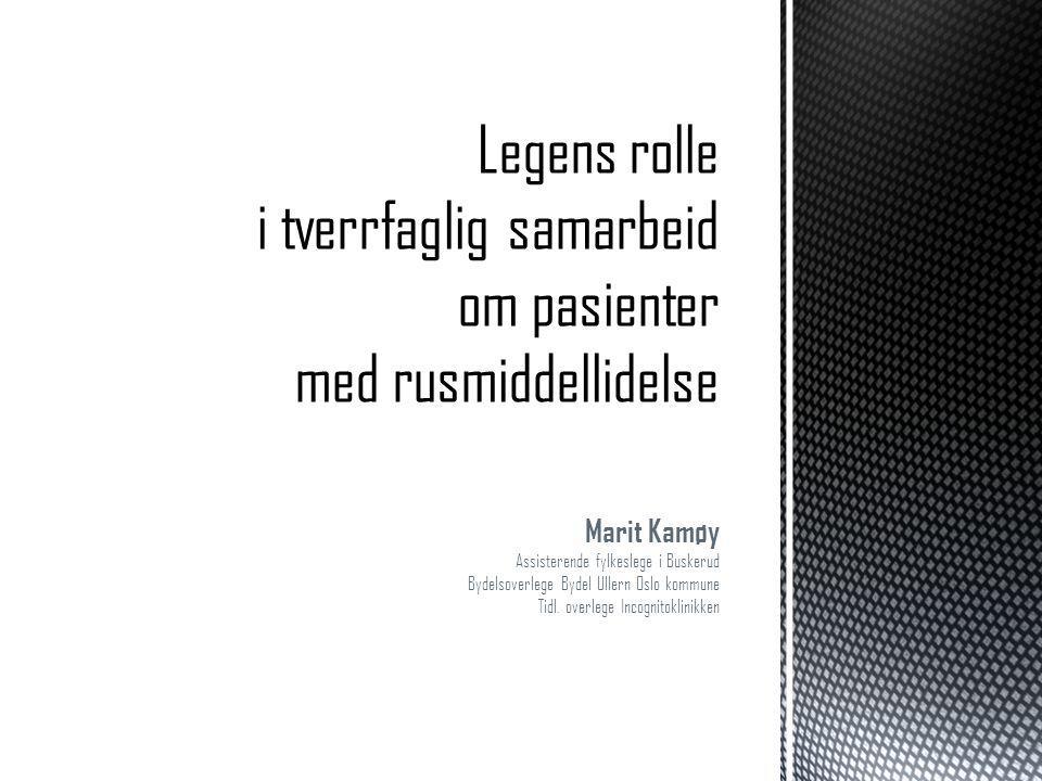 Marit Kamøy Assisterende fylkeslege i Buskerud Bydelsoverlege Bydel Ullern Oslo kommune Tidl. overlege Incognitoklinikken