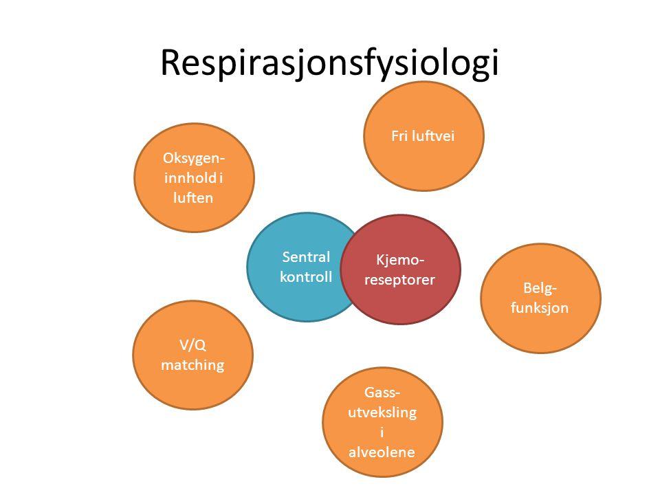 Respirasjonsfysiologi Gass- utveksling i alveolene Fri luftvei Belg- funksjon Oksygen- innhold i luften V/Q matching Sentral kontroll Kjemo- reseptore