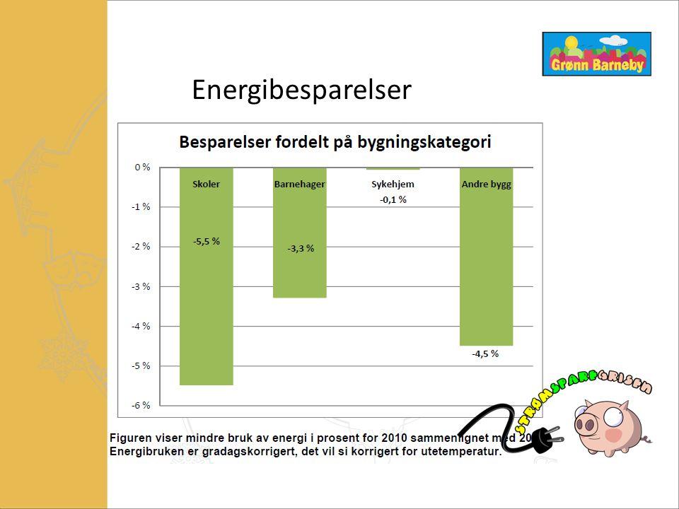 Energibesparelser  Strømsparegrisen – 2010
