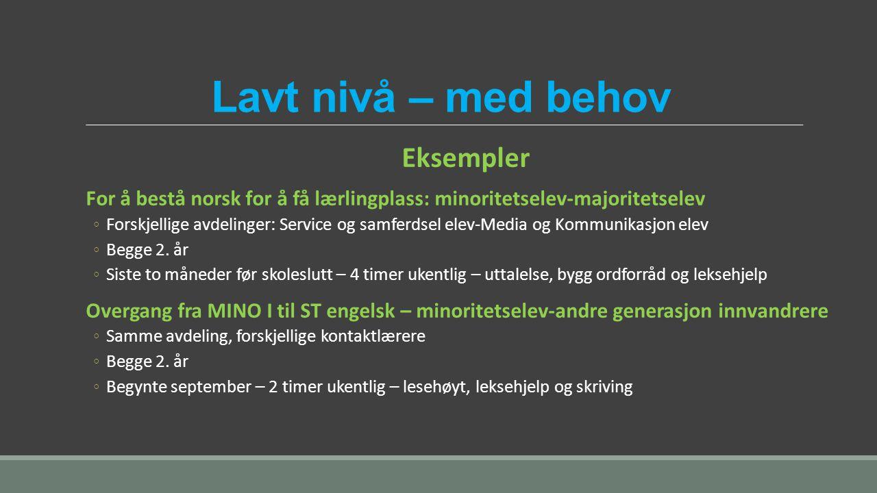 Lavt nivå – med behov Eksempler For å bestå norsk for å få lærlingplass: minoritetselev-majoritetselev ◦Forskjellige avdelinger: Service og samferdsel