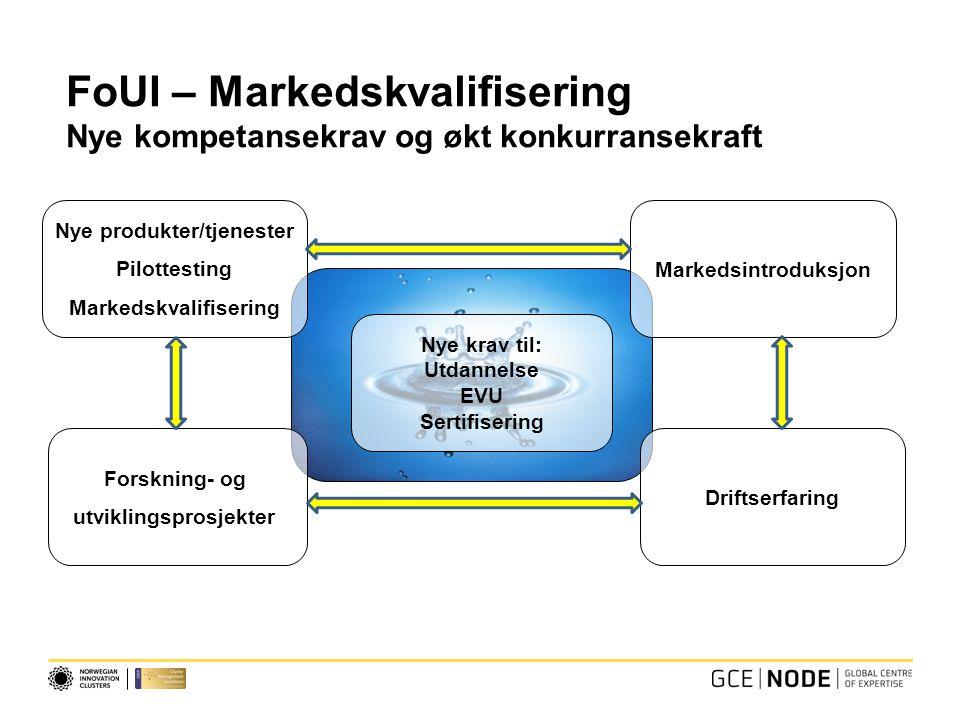 Nye krav til: Utdannelse EVU Sertifisering Forskning- og utviklingsprosjekter Nye produkter/tjenester Pilottesting Markedskvalifisering FoUI – Markedskvalifisering Nye kompetansekrav og økt konkurransekraft Markedsintroduksjon Driftserfaring