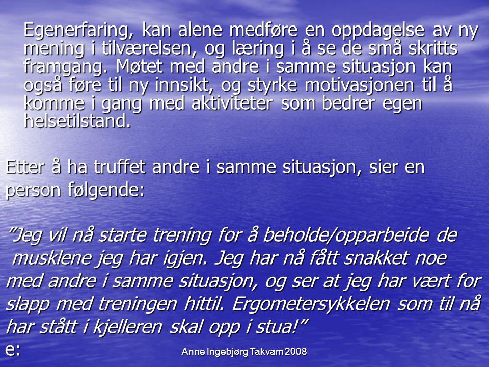 Anne Ingebjørg Takvam 2008 Egenerfaring, kan alene medføre en oppdagelse av ny mening i tilværelsen, og læring i å se de små skritts framgang. Møtet m