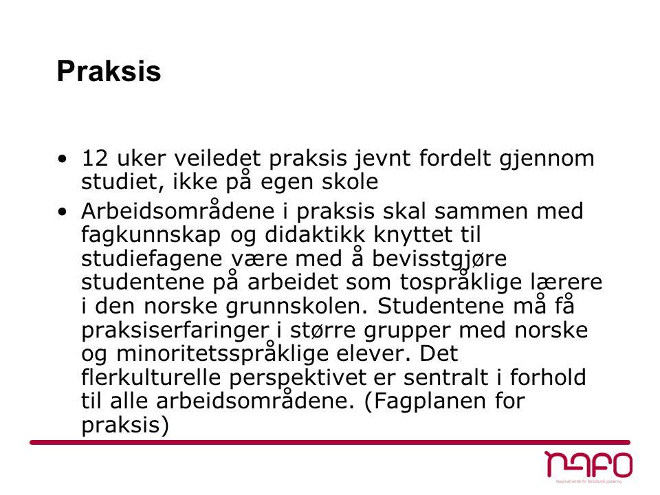 Praksis 12 uker veiledet praksis jevnt fordelt gjennom studiet, ikke på egen skole Arbeidsområdene i praksis skal sammen med fagkunnskap og didaktikk