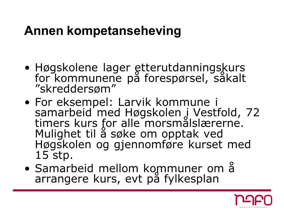 Annen kompetanseheving Høgskolene lager etterutdanningskurs for kommunene på forespørsel, såkalt skreddersøm For eksempel: Larvik kommune i samarbeid med Høgskolen i Vestfold, 72 timers kurs for alle morsmålslærerne.
