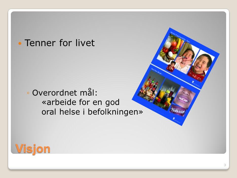 Prosjektarbeid Prosjekter Prosjektmidler Søknad om tilskudd Norsk tannverns nettverk Mal for prosjektarbeid 14