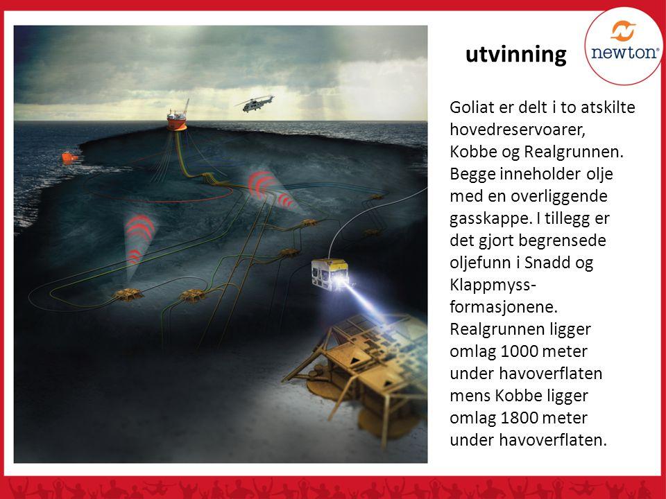 utvinning Goliat er delt i to atskilte hovedreservoarer, Kobbe og Realgrunnen. Begge inneholder olje med en overliggende gasskappe. I tillegg er det g