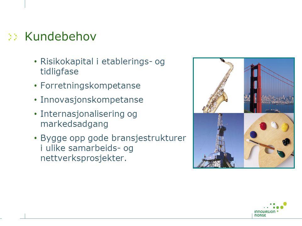 Kundebehov Risikokapital i etablerings- og tidligfase Forretningskompetanse Innovasjonskompetanse Internasjonalisering og markedsadgang Bygge opp gode bransjestrukturer i ulike samarbeids- og nettverksprosjekter.