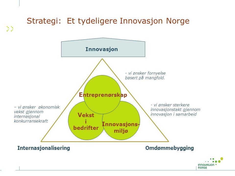 Innovasjon - vi ønsker fornyelse basert på mangfold.