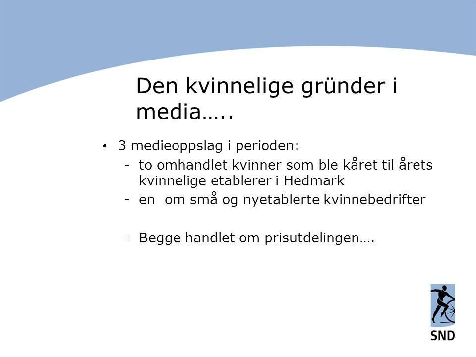 Den kvinnelige gründer i media…..  3 medieoppslag i perioden: -to omhandlet kvinner som ble kåret til årets kvinnelige etablerer i Hedmark -en om små