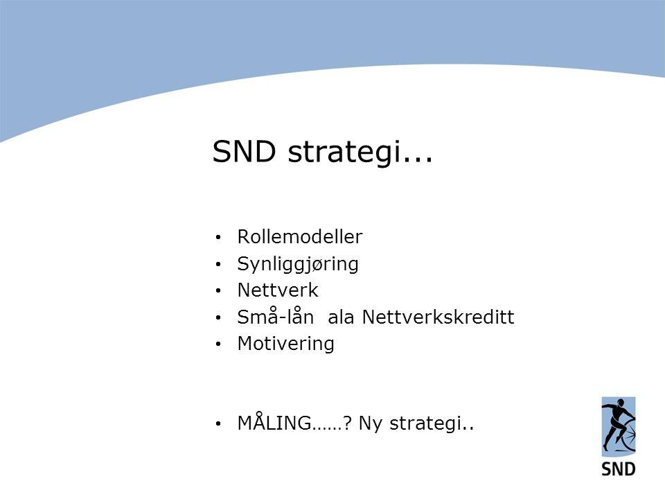 SND strategi...  Rollemodeller  Synliggjøring  Nettverk  Små-lån ala Nettverkskreditt  Motivering  MÅLING……? Ny strategi..