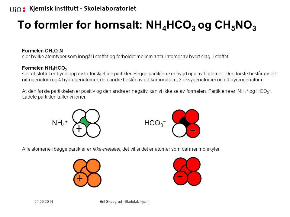 Kjemisk institutt - Skolelaboratoriet To formler for hornsalt: NH 4 HCO 3 og CH 5 NO 3 Formelen CH 5 O 3 N sier hvilke atomtyper som inngår i stoffet og forholdet mellom antall atomer av hvert slag, i stoffet.