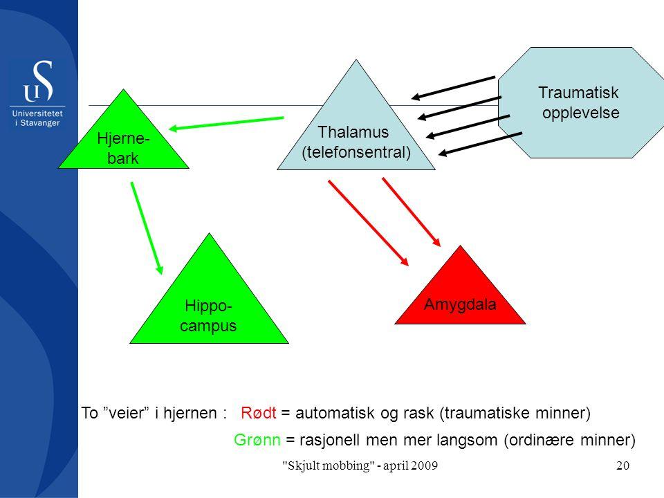 Skjult mobbing - april 200920 Amygdala Hjerne- bark Hippo- campus Thalamus (telefonsentral) Traumatisk opplevelse Rødt = automatisk og rask (traumatiske minner) Grønn = rasjonell men mer langsom (ordinære minner) To veier i hjernen :