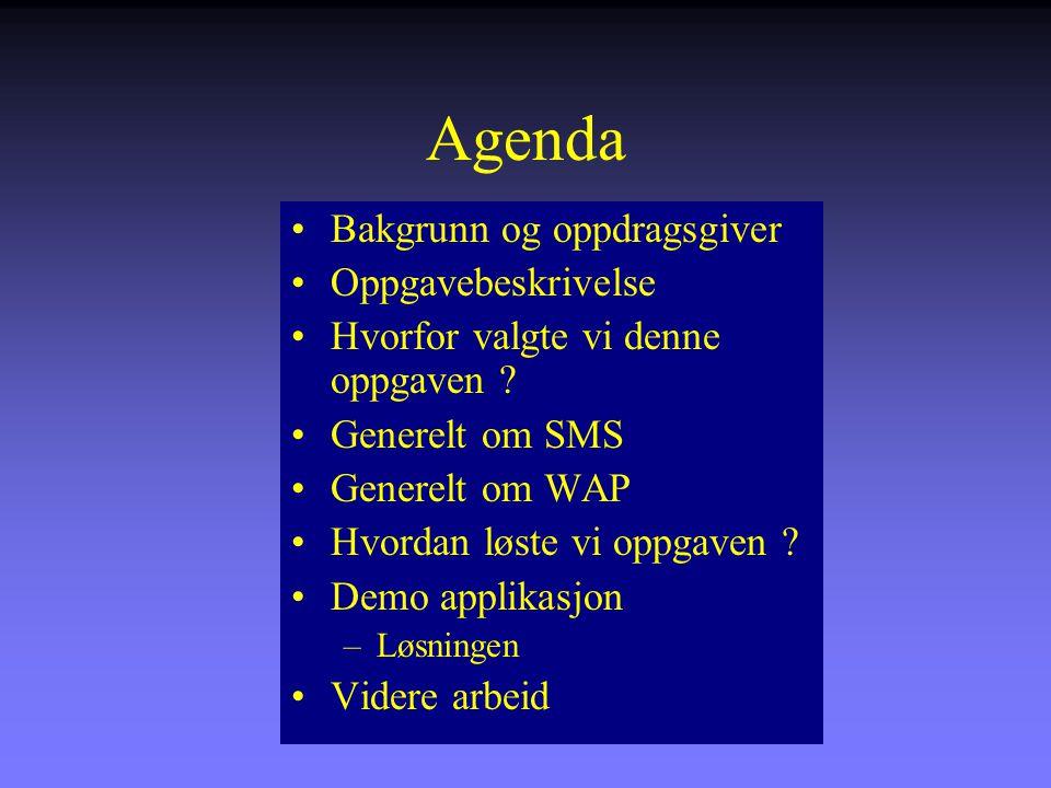 Agenda Bakgrunn og oppdragsgiver Oppgavebeskrivelse Hvorfor valgte vi denne oppgaven .