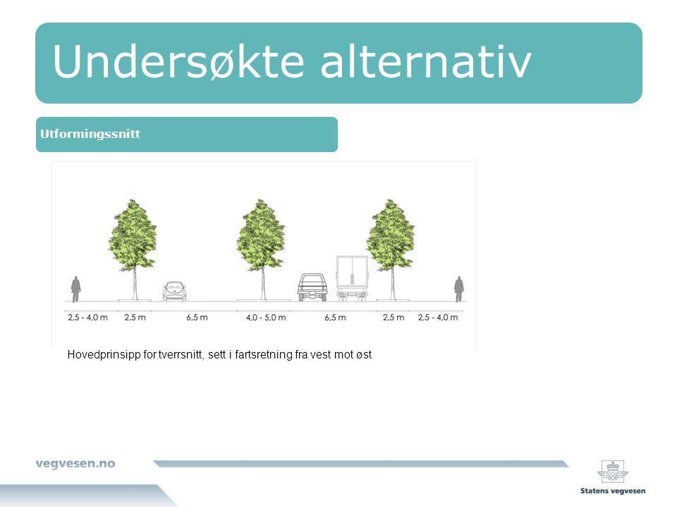 Undersøkte alternativ Utformingssnitt Hovedprinsipp for tverrsnitt, sett i fartsretning fra vest mot øst