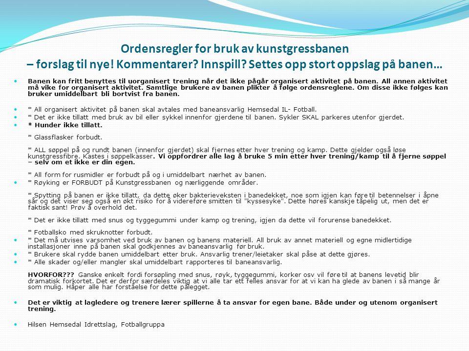 Ordensregler for bruk av kunstgressbanen – forslag til nye.