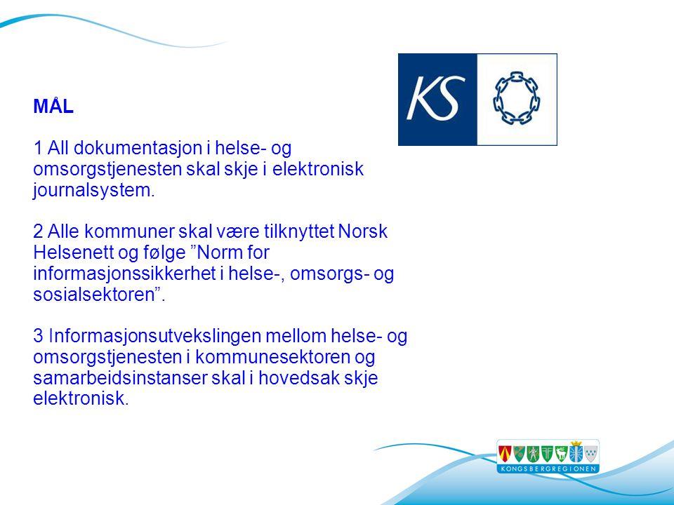 MÅL 1 All dokumentasjon i helse- og omsorgstjenesten skal skje i elektronisk journalsystem.