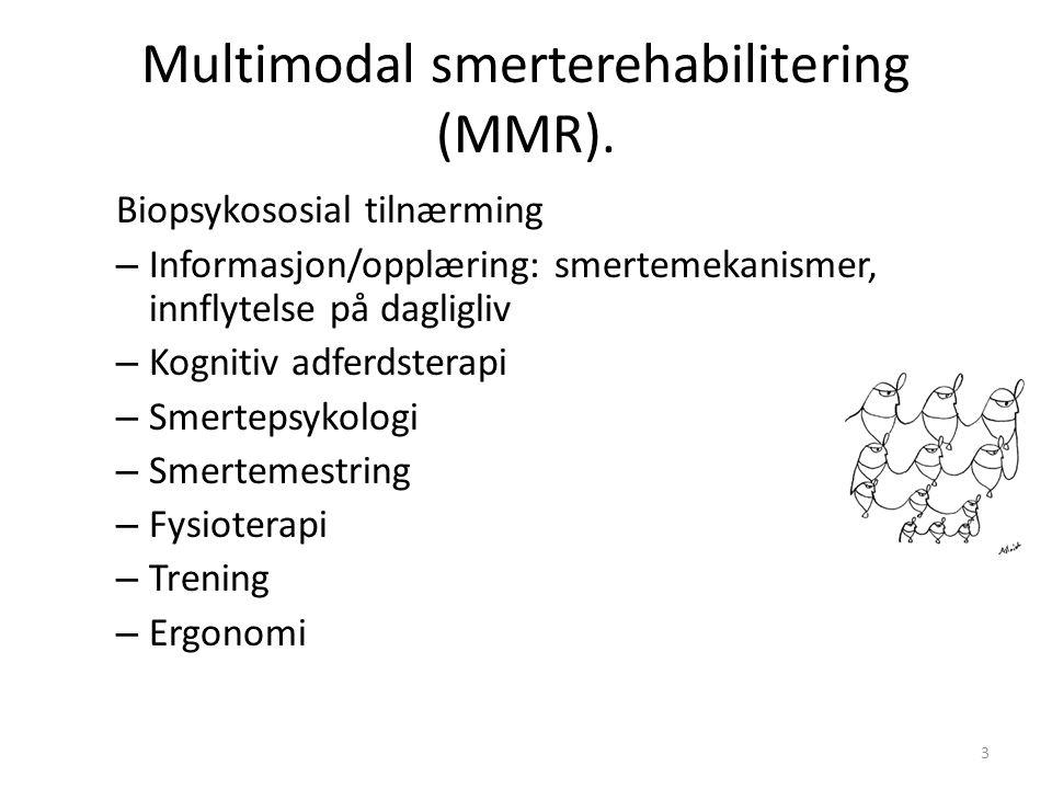 Multimodal smerterehabilitering (MMR). Biopsykososial tilnærming – Informasjon/opplæring: smertemekanismer, innflytelse på dagligliv – Kognitiv adferd