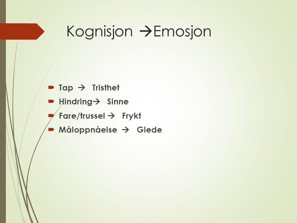 Kognisjon  Emosjon  Tap  Tristhet  Hindring  Sinne  Fare/trussel  Frykt  Måloppnåelse  Glede
