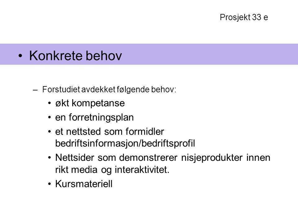 Prosjekt 33 e Konkrete behov –Forstudiet avdekket følgende behov: økt kompetanse en forretningsplan et nettsted som formidler bedriftsinformasjon/bedr