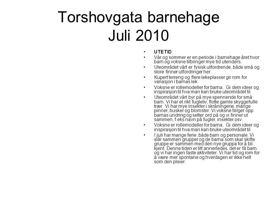 Torshovgata barnehage Juli 2010 UTETID: Vår og sommer er en periode i barnehage året hvor barn og voksne tilbringer mye tid utendørs.